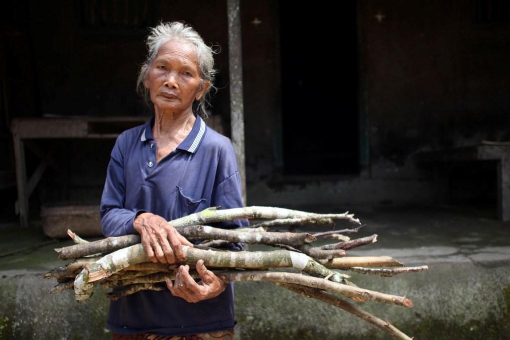 Seorang perempuan tua Bali mengumpulkan kayu bakar untuk memasak.