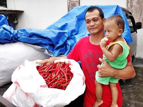 """""""Emas Cair"""" di Malang (Jawa Timur)"""