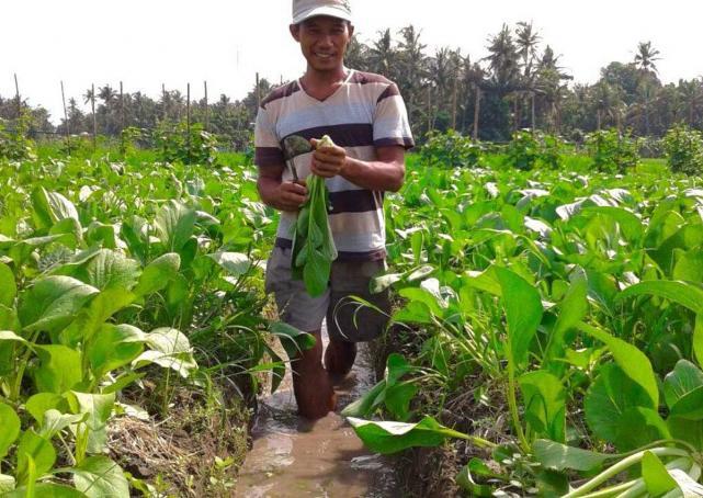 """""""Emas Hitam"""" yang Menjanjikan dari Indonesia"""